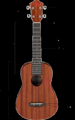 anatomia do ukulele